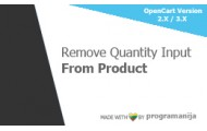 Remove Quantity Input From Product